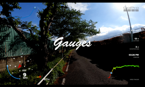 Gauges(ゲージ)を表示した画面