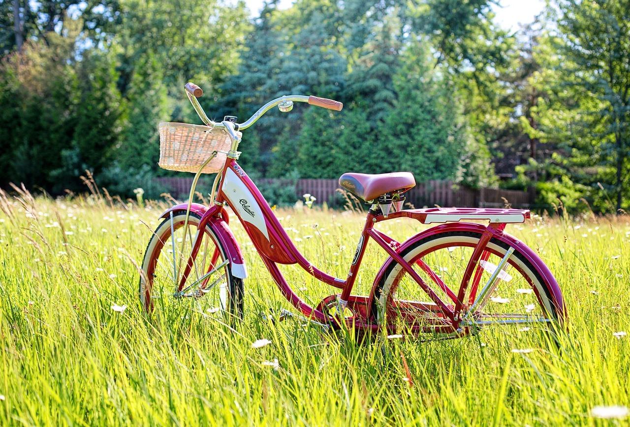 草むらと自転車